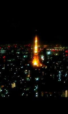 東京タワーを下に見て