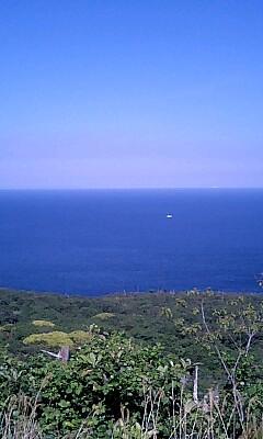 コバルトブルーの海を眺めて